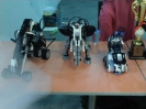 robotic_6
